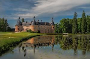 Fotos Frankreich Burg Teich Bäume Saint-Fargeau, Bourgogne Natur