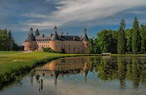 Fotos Frankreich Burg Teich Bäume Saint-Fargeau, Bourgogne