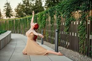 Hintergrundbilder Georgiy Dyakov Posiert Kleid Hand Ballett Rotschopf junge Frauen