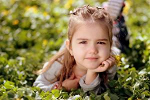 Fotos Gras Kleine Mädchen Blick Liegen kind