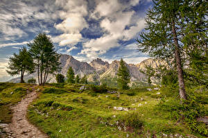 Pictures Italy Mountains Clouds Trees Alps HDR Trail Falzarego, Dolomites