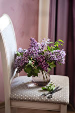 Pictures Lilac Chair Vase