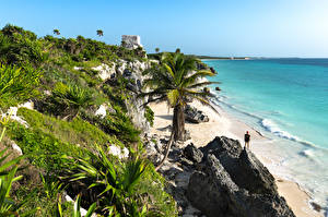 Wallpapers Mexico Coast Sea Palms Crag Tulum Nature