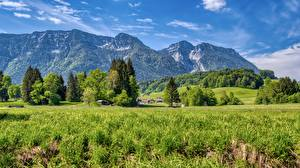 Pictures Mountain Scenery Germany Grass Chiemgau, Upper Bavaria Nature