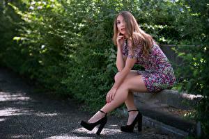 Bilder Sitzen Bein Kleid Starren Braunhaarige Nicole Mädchens