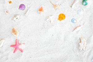 Hintergrundbilder Muscheln Sand Vorlage Grußkarte