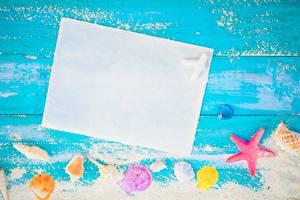 Hintergrundbilder Muscheln Sommer Vorlage Grußkarte Blatt Papier