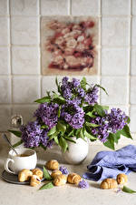 Images Still-life Lilac Croissant Vase Cup Flowers Food