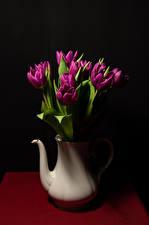 桌面壁纸,,郁金香,黑色背景,花瓶,勃艮第的顏色,花卉