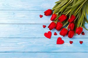 Fotos Tulpen Valentinstag Herz Bretter Vorlage Grußkarte Blüte
