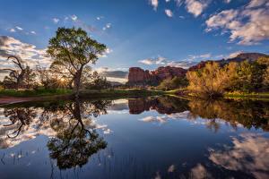 Bilder Vereinigte Staaten See Felsen Wolke Spiegelt Bäume Sedona, Arizona Natur