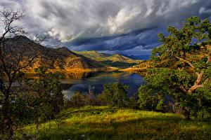 Fotos Vereinigte Staaten Parks See Landschaftsfotografie Kalifornien Hügel Bäume Gras Redwood National Park