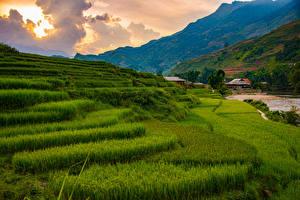 Hintergrundbilder Vietnam Berg Acker Wolke Sapa Natur