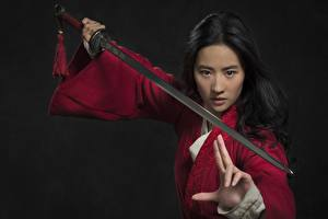 Wallpaper Warriors Asiatic Gestures Brunette girl Swords Pose Staring Liu Yifei female