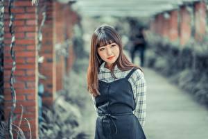 Bakgrundsbilder på skrivbordet Asiatisk Suddig bakgrund Brunhårig tjej Ser ung kvinna