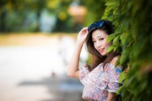 Tapety na pulpit Azjaci Bokeh Dziewczyna z brązowymi włosami Okulary Ręce Wzrok Uśmiech dziewczyna