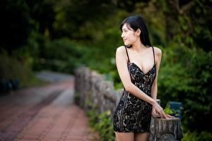 Fondos de escritorio Asiático Bokeh Cabello negro Nia Vestido Mano mujeres jóvenes