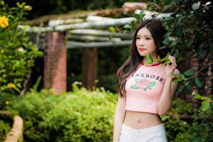 Hintergrundbilder Asiatische Ast Bauch T-Shirt Blick Bokeh junge Frauen