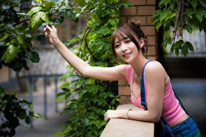 Pictures Asiatic Branches Hands Brown haired Glance Smile Girls