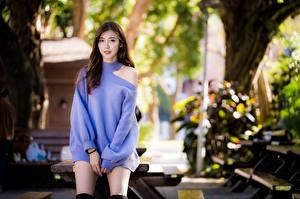 Bakgrundsbilder på skrivbordet Asiatisk Brunhårig tjej Klänning Blick Bokeh Tröja Unga_kvinnor