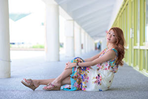 Tapety na pulpit Azjatycka Brązowowłosa dziewczyna Sukienka Siedzą Ręce Nogi dziewczyna