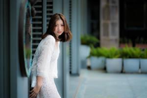 Fotos & Bilder Asiatische Braunhaarige Blick Bokeh Mädchens