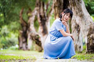 Bilder Asiatische Kleid Hand Starren Unscharfer Hintergrund Brünette junge frau