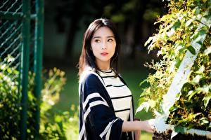 Fotos & Bilder Asiatische Blick Brünette Mädchens