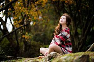 Tapety na pulpit Azjaci Siedzą Bokeh Brązowowłosa dziewczyna młode kobiety