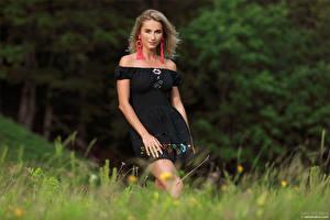 Bakgrundsbilder på skrivbordet Cara Mell Blond tjej Gräset Klänning Blick ung kvinna