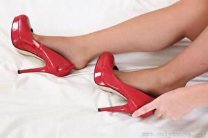 Fotos Großansicht Hand Bein Stöckelschuh Strumpfhose junge Frauen