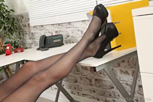 Bilder Nahaufnahme Bein Stöckelschuh Strumpfhose junge Frauen