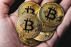 Images Closeup Money Bitcoin Gold color