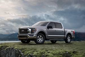 Fotos Ford Pick-up Grau Metallisch Seitlich F-150 Autos