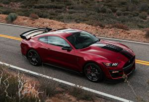 Wallpapers Ford Maroon Mustang Shelby GT500 auto