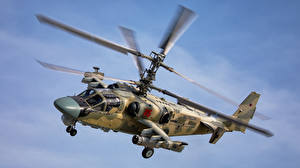 Photo Helicopter Russian Flight ka-52 alligator