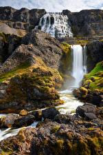 Desktop hintergrundbilder Island Gebirge Steine Wasserfall Flusse Felsen Dynjandi waterfalls Natur