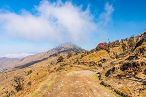 Bureaubladachtergronden India Bergen Een boom Smalle weg Wolken Singalila National Park, West Bengal
