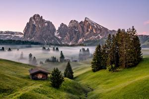 Images Italy Mountains Trees Fog Alps Dolomites