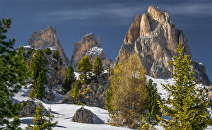 Image Italy Winter Alps Cliff Spruce Snow Canazei Trentino