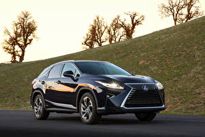 Pictures Lexus Black Crossover Metallic 2019-20 RX 450h F SPORT