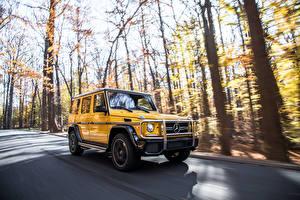 Fotos & Bilder Mercedes-Benz G-Klasse Wege Bewegung Gelb SUV g63 AMG Autos