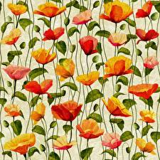 Fotos & Bilder Mohn Gezeichnet Textur Blumen