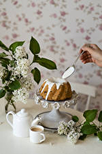 Desktop wallpapers Pound Cake Coffee Lilac Spoon Mug Food Flowers