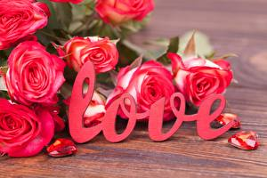 Pictures Roses Valentine's Day English Text Red Flowers