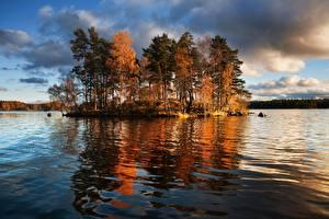 Fotos & Bilder Russland See Insel Bäume Vuoksa Lake, Leningrad region, Priozersky district Natur