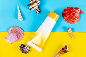 Fotos Muscheln Sommer Kosmetische Creme