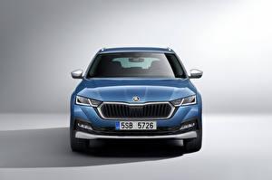 Tapety na pulpit Skoda Barwa niebieska Metaliczna Widok z przodu Octavia Scout, 2020 Samochody
