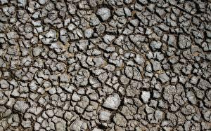Bilder Textur Erde Trocknen