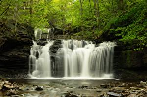 Photo USA Forests Waterfalls Stone River Trees Mohawk Falls, Colebrook, New Hampshire Nature